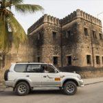 Tanzania Activities, Wildlife and Tours