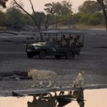 Botswana Expeditions
