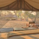 Chobe under canvas
