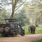 &Beyond Ngorongoro Crater Lodge