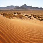 Sossusvlei Quadbiking Dunes